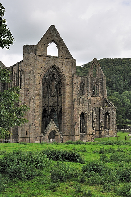 Analysis of lines composed a few miles above tintern abbey
